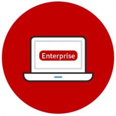 프로엔 Enterprise 기업 버전 (신규 5 Copy)